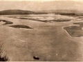 harbour-in-1700-with-its-natural-mangrove-swamps